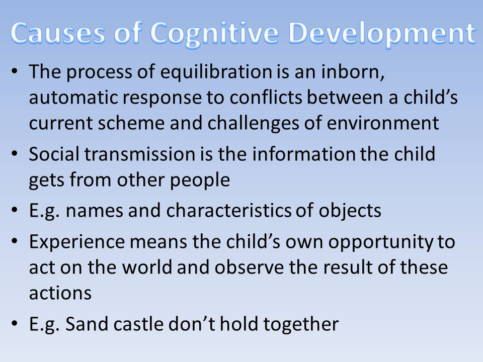 Causes of Cognitive Development