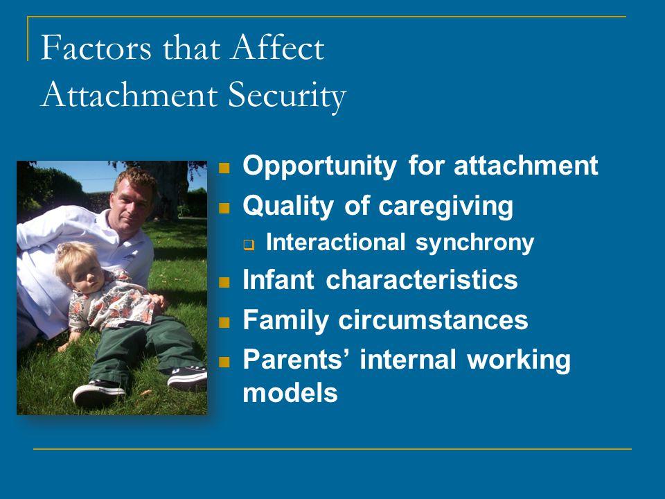 Factors that Affect Attachment Security
