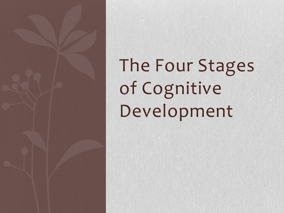 The Four Stages of Cognitive Development