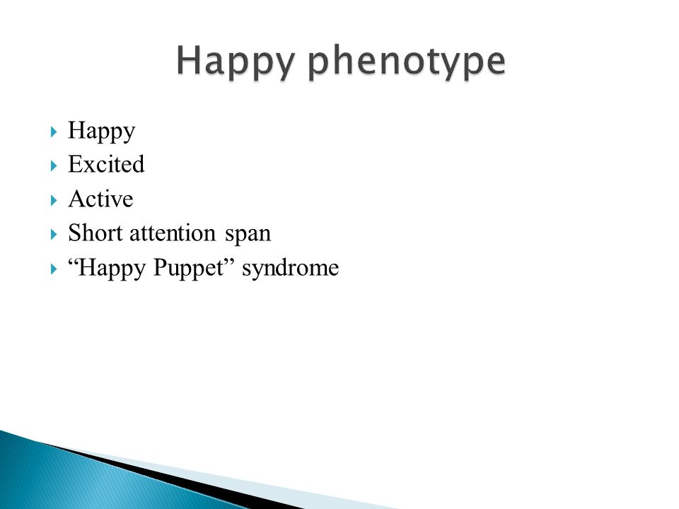 Happy phenotype Happy Excited Active Short attention span