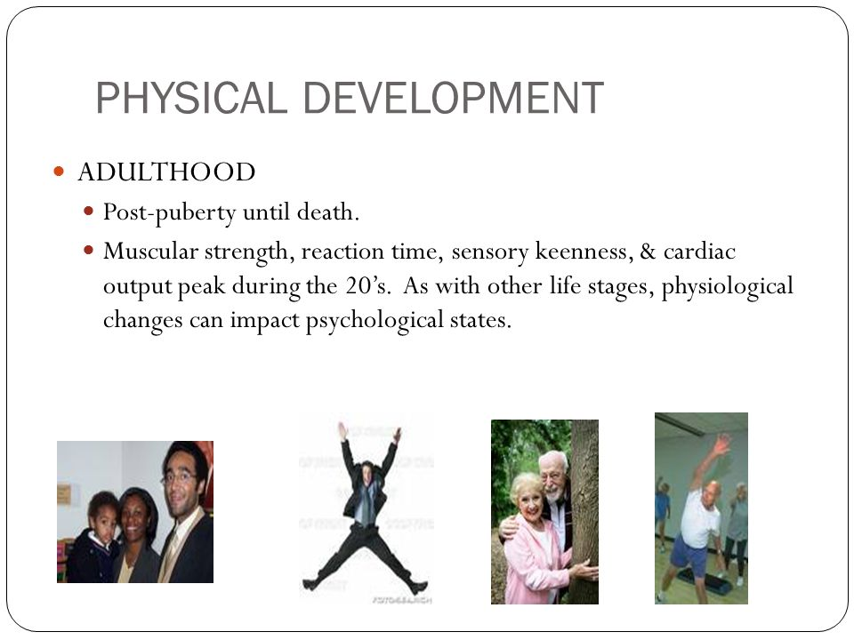 PHYSICAL DEVELOPMENT ADULTHOOD Post-puberty until death.