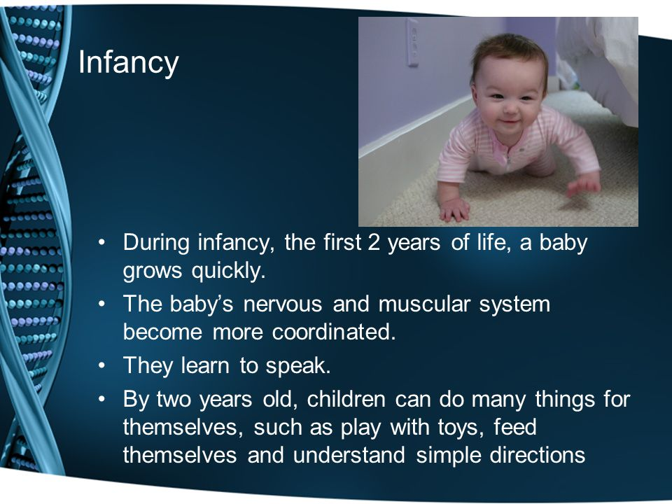 Infancy During infancy, the first 2 years of life, a baby grows quickly. The baby's nervous and muscular system become more coordinated.
