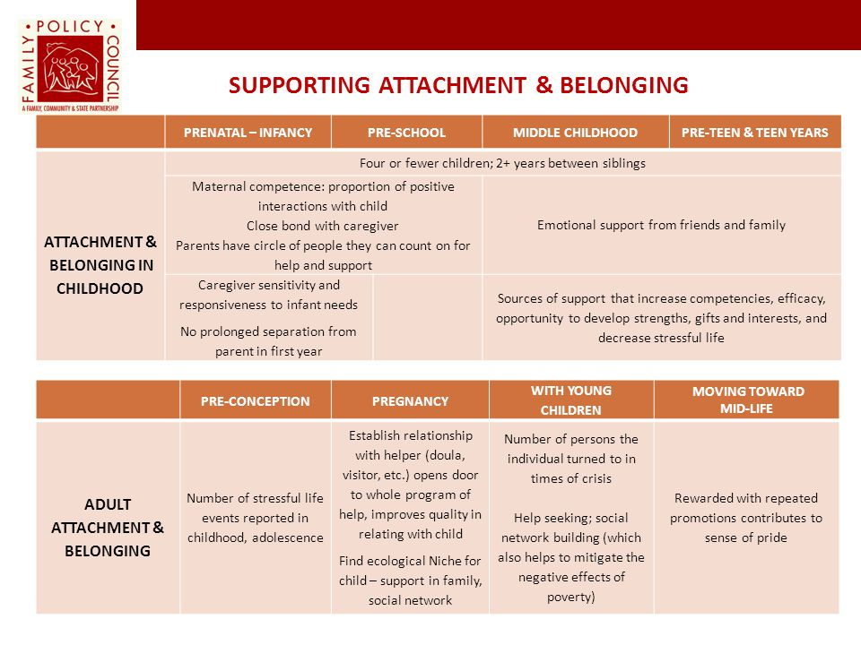 Supporting Attachment & Belonging