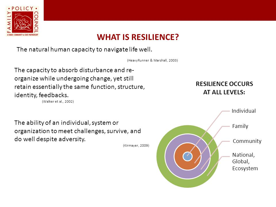 Resilience Occurs at All Levels: