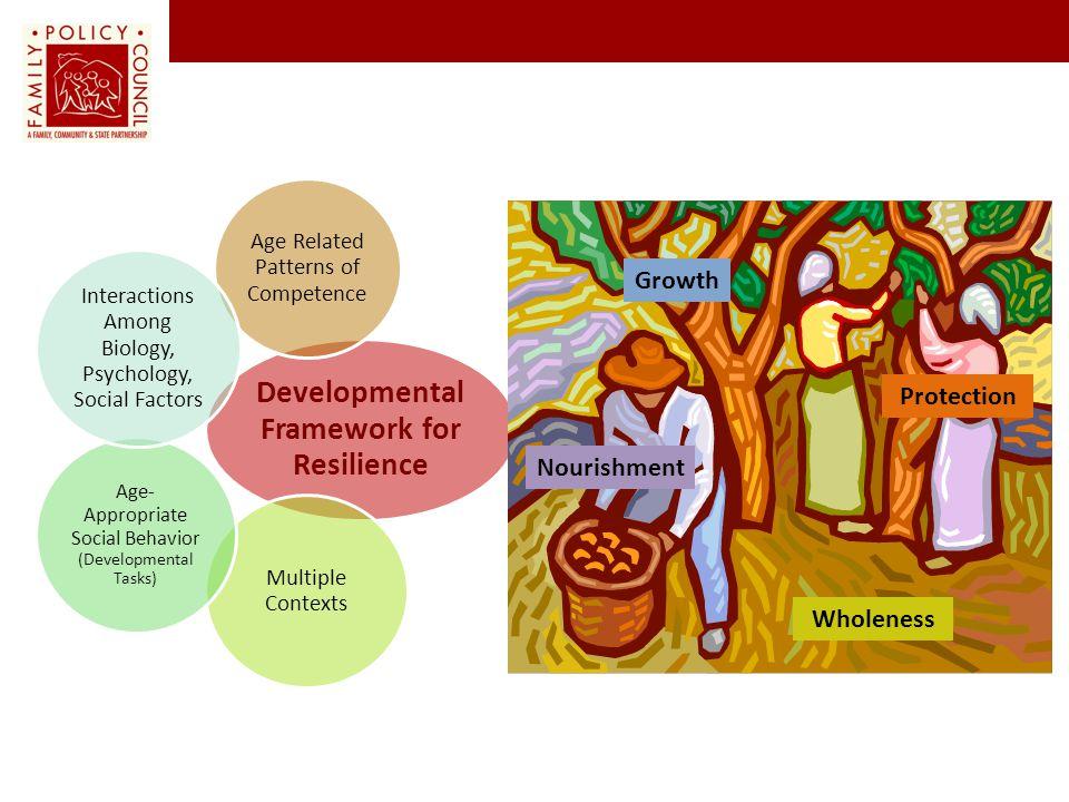 Developmental Framework for Resilience