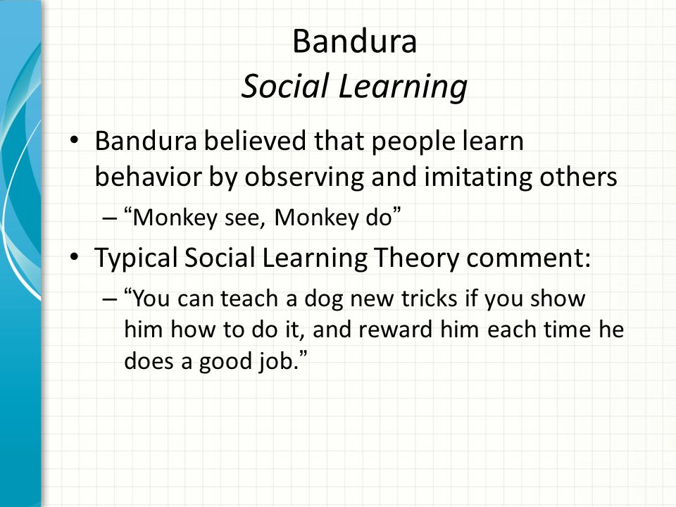 Bandura Social Learning