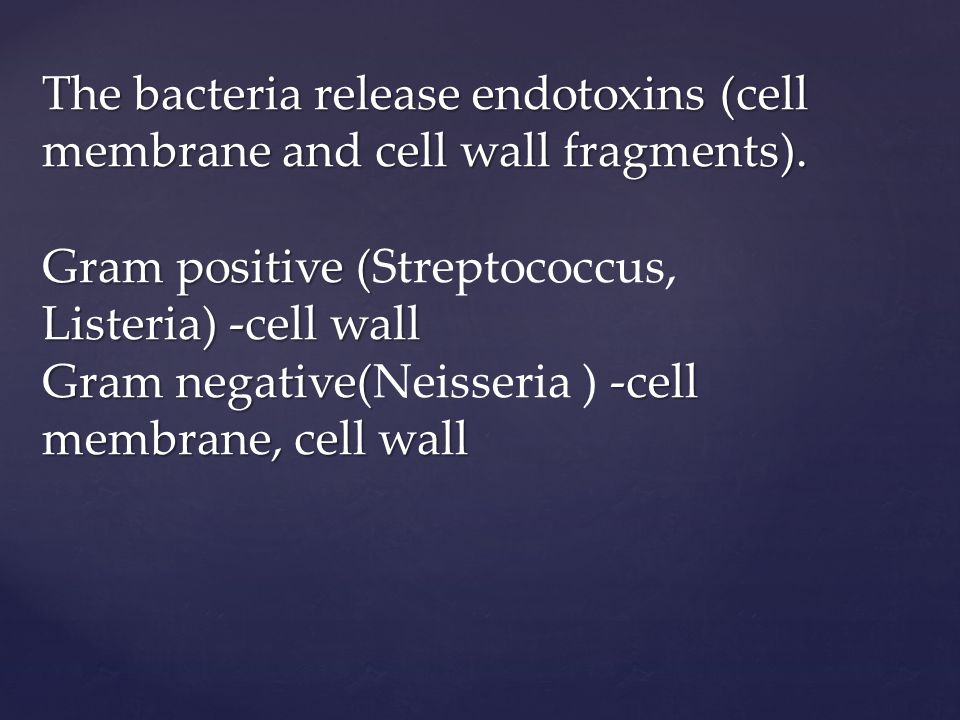 The bacteria release endotoxins (cell membrane and cell wall fragments).