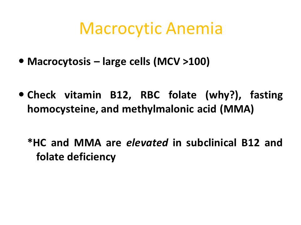Macrocytic Anemia Macrocytosis – large cells (MCV >100)