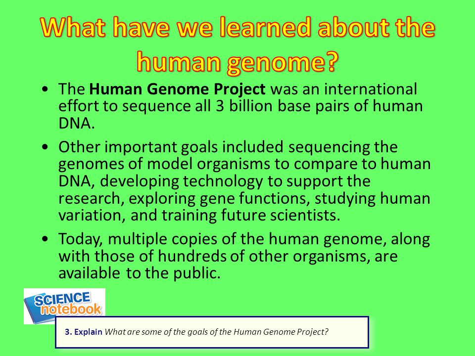 What have we learned about the human genome