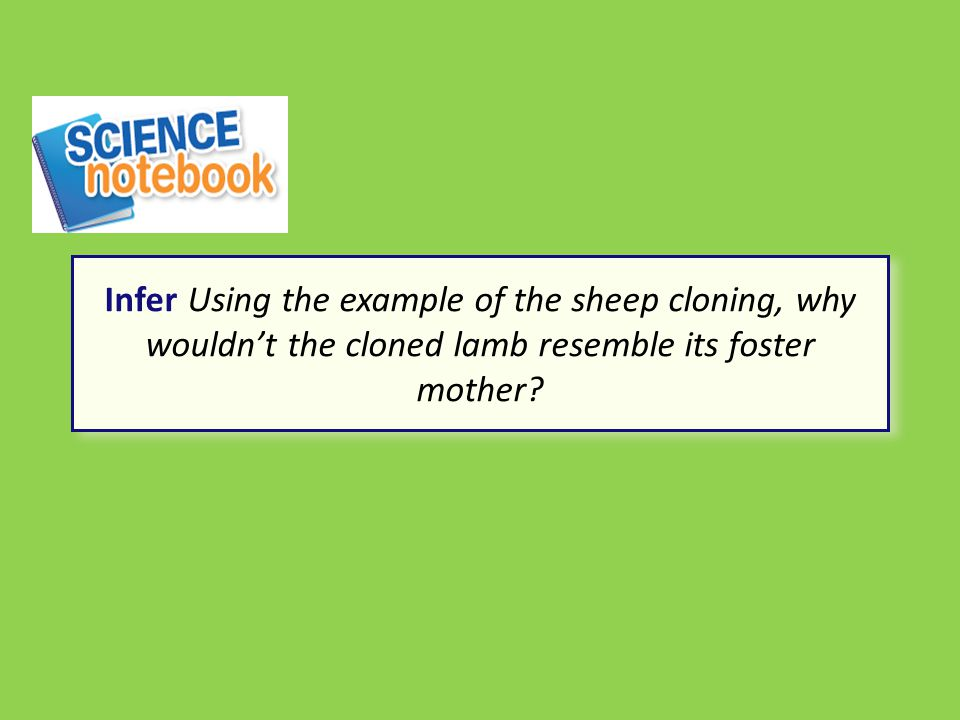 Infer Using the example of the sheep cloning, why wouldn't the cloned lamb resemble its foster mother