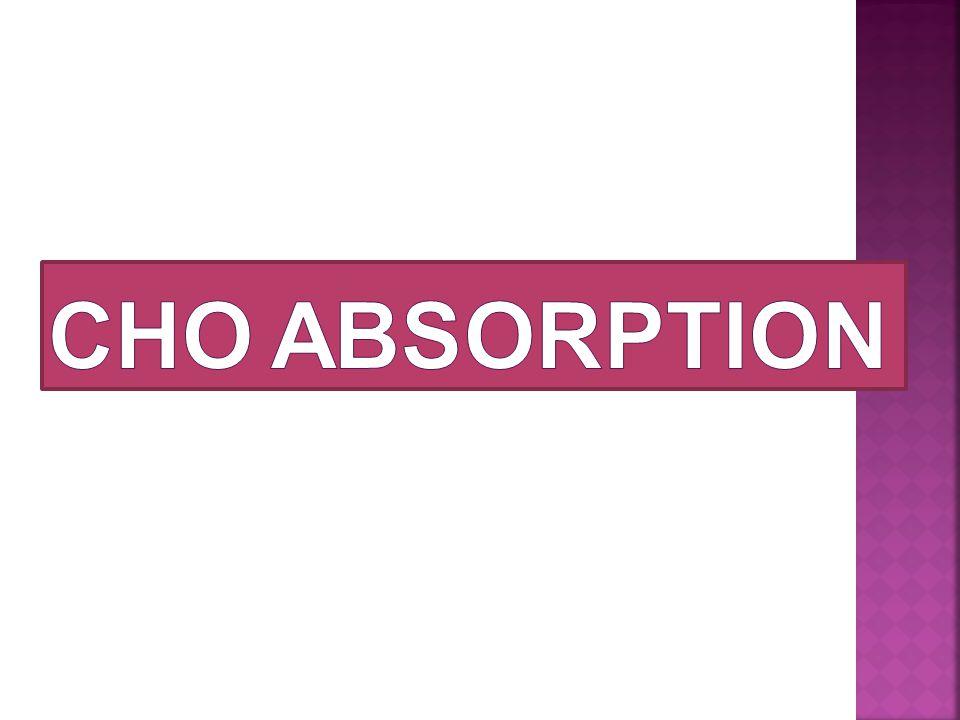 CHO ABSORPTION
