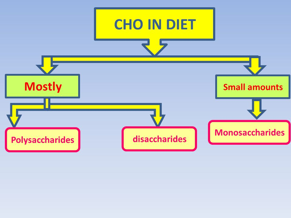 CHO IN DIET Mostly Small amounts Monosaccharides Polysaccharides