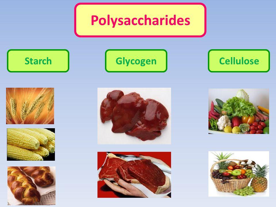 Polysaccharides Starch Glycogen Cellulose