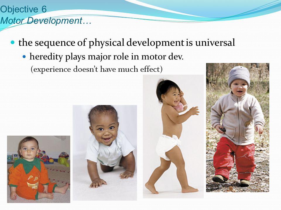 Objective 6 Motor Development…