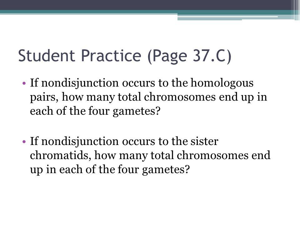 Student Practice (Page 37.C)