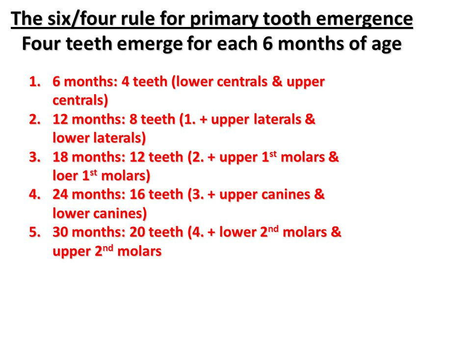 The six/four rule for primary tooth emergence Four teeth emerge for each 6 months of age
