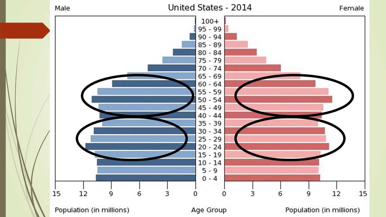 United States Age Structure Diagram