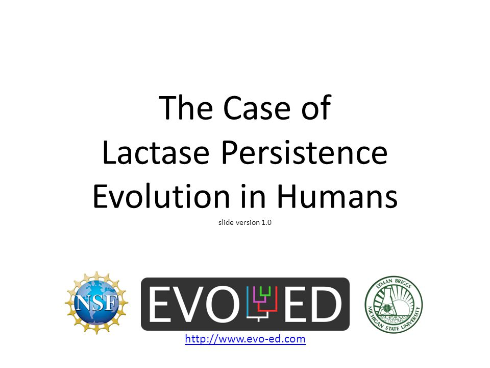 The Case of Lactase Persistence Evolution in Humans slide version 1.0
