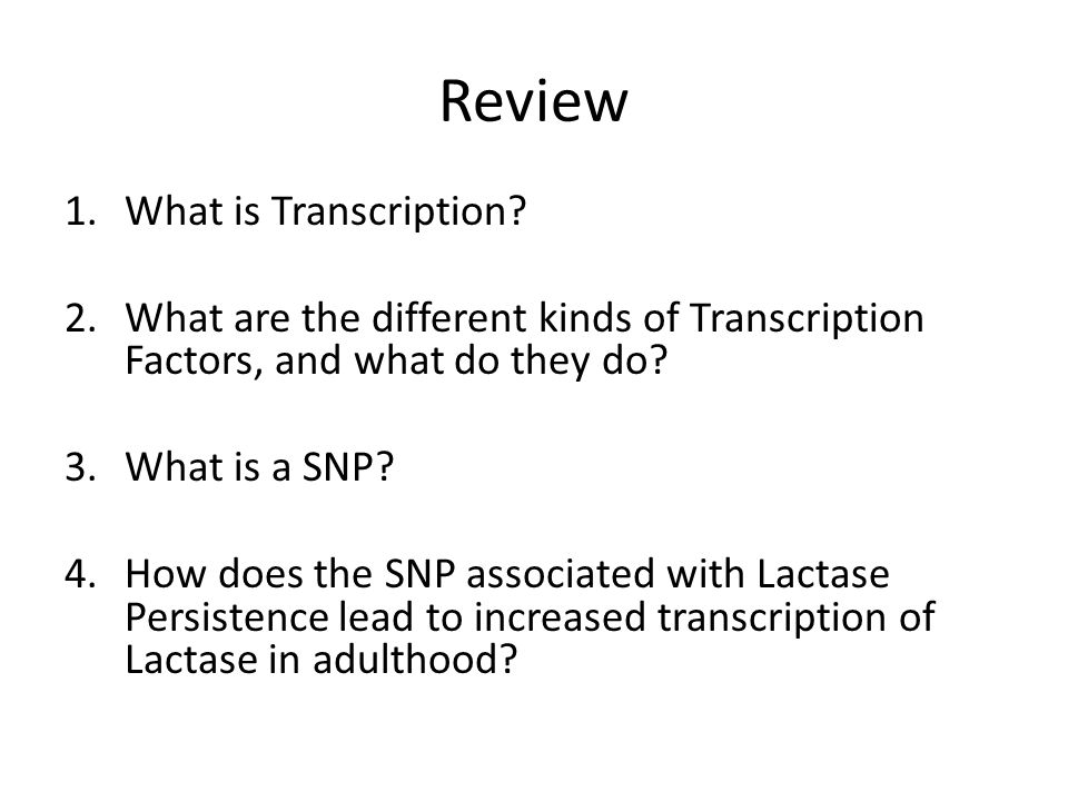 Review What is Transcription