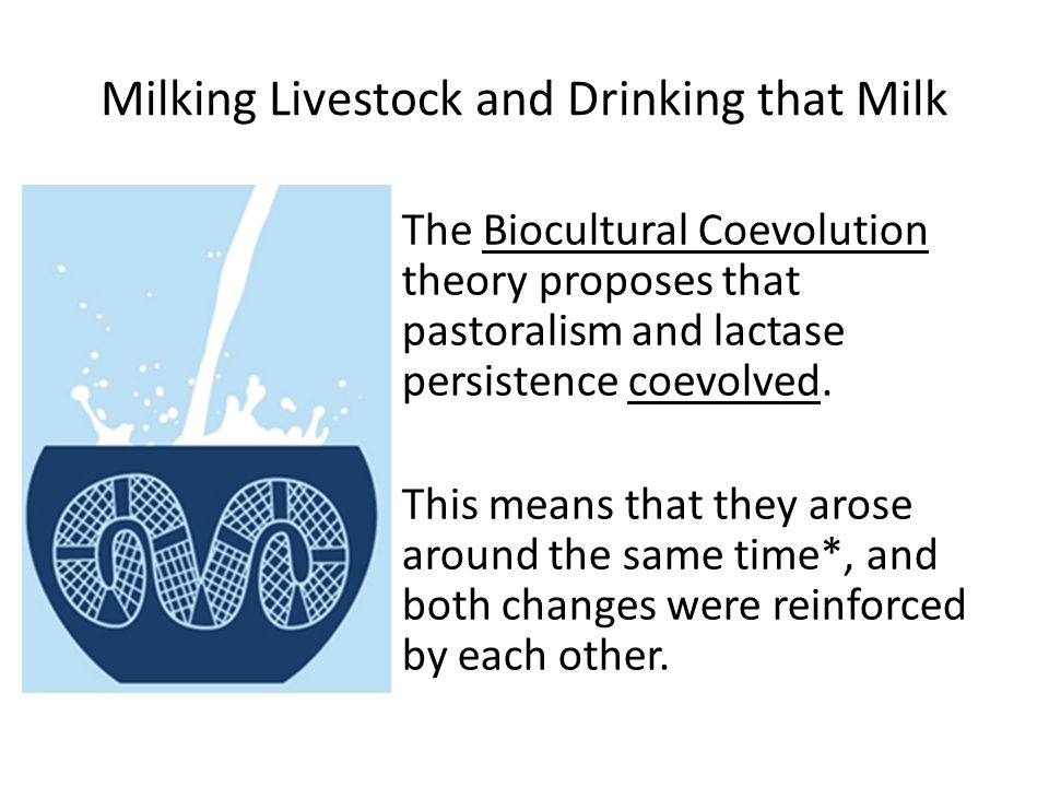 Milking Livestock and Drinking that Milk