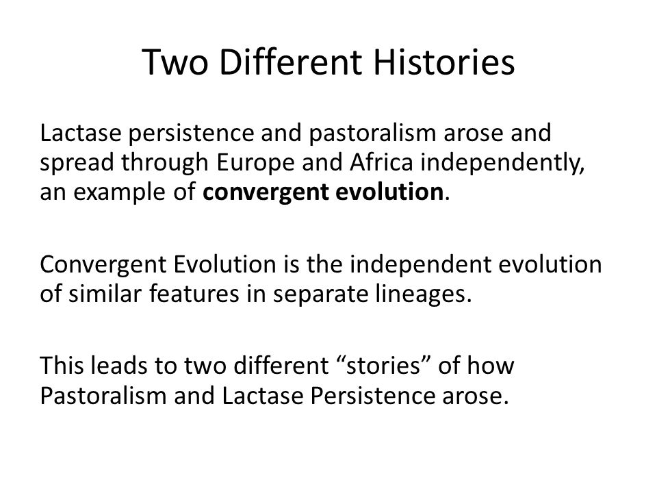 Two Different Histories