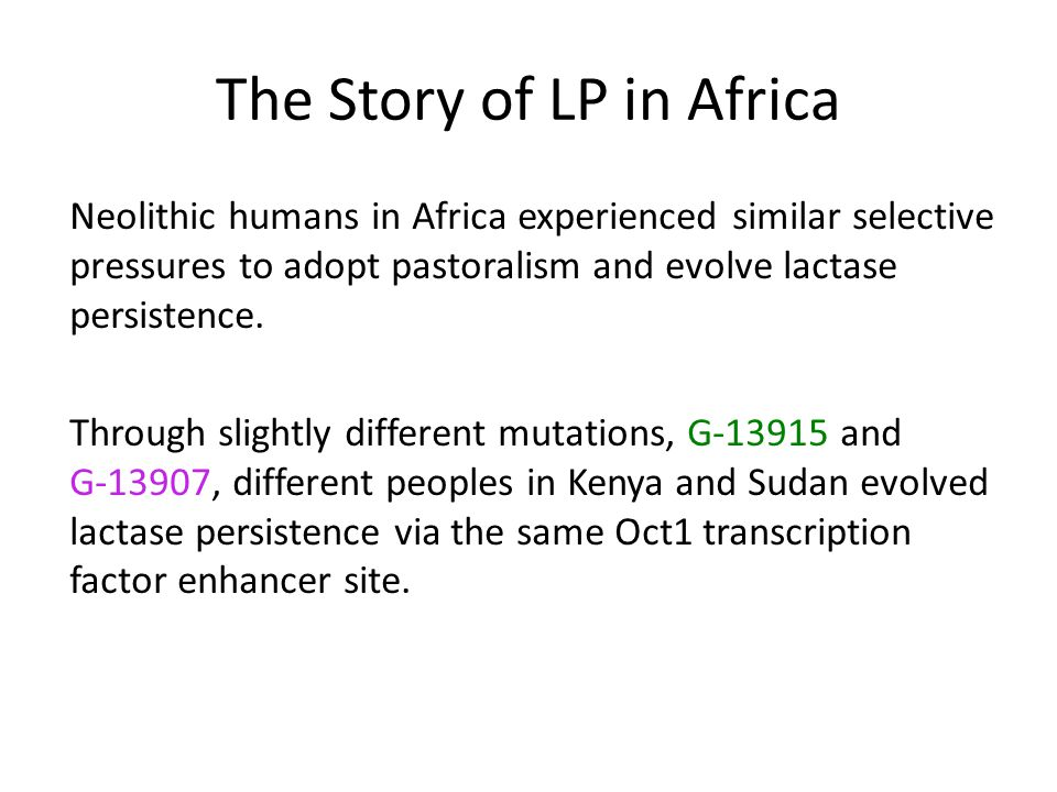 The Story of LP in Africa