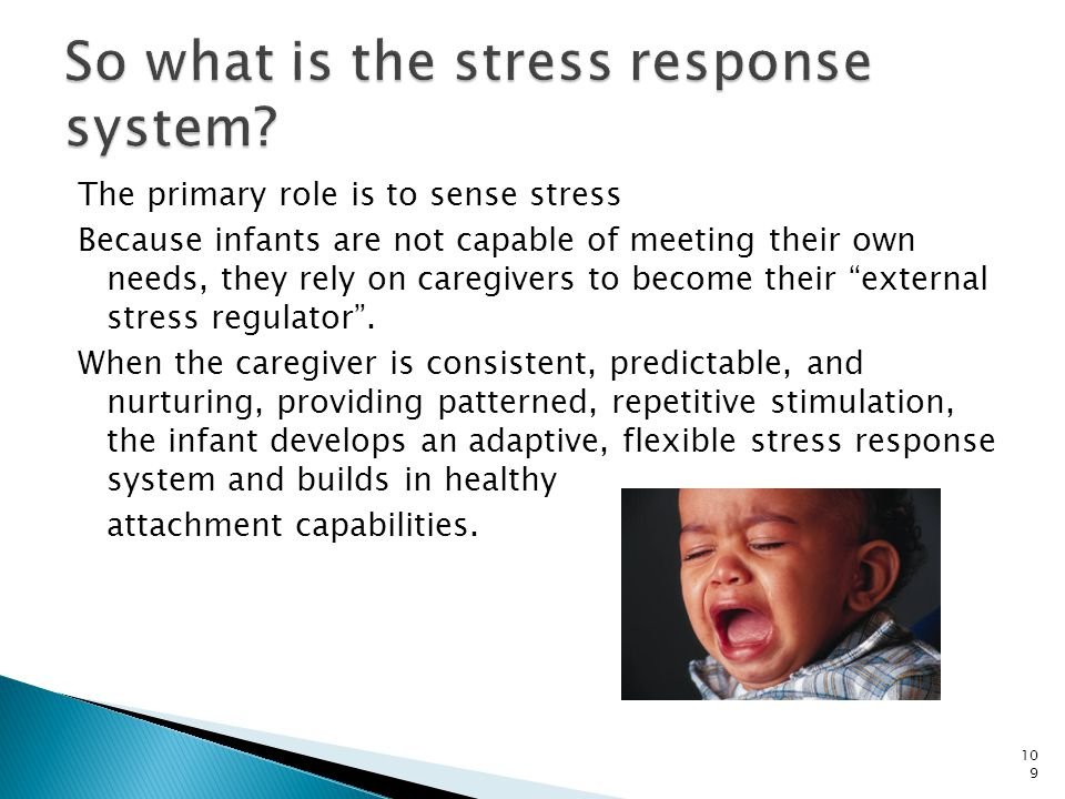 So what is the stress response system