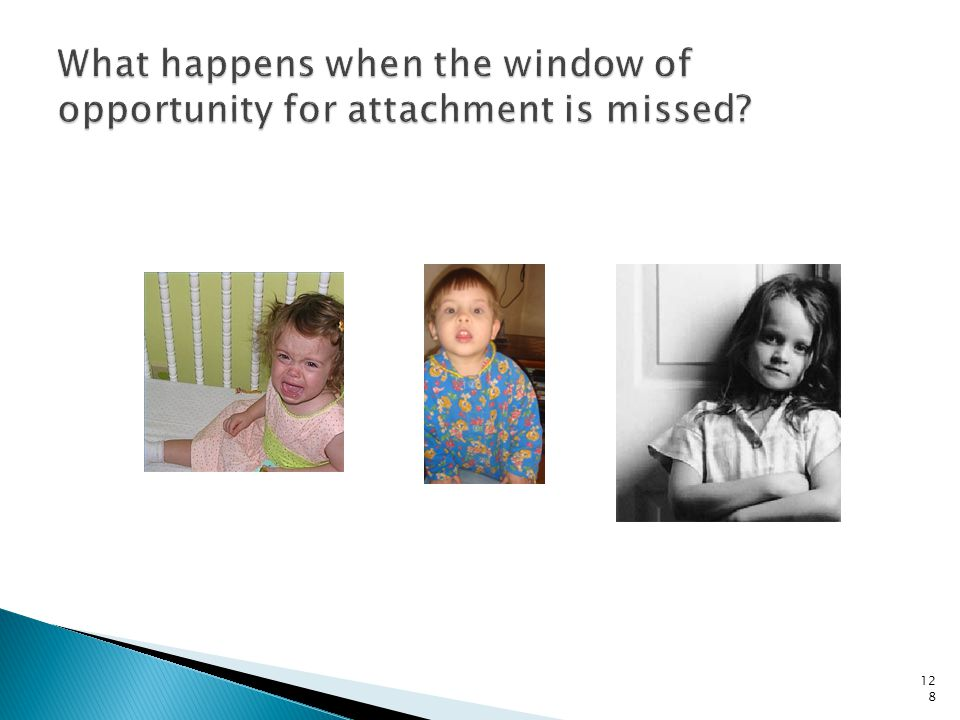 What happens when the window of opportunity for attachment is missed