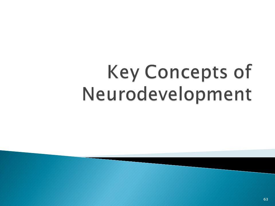 Key Concepts of Neurodevelopment