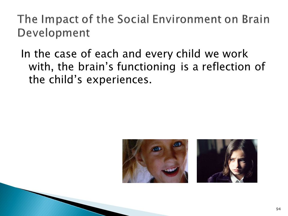 The Impact of the Social Environment on Brain Development