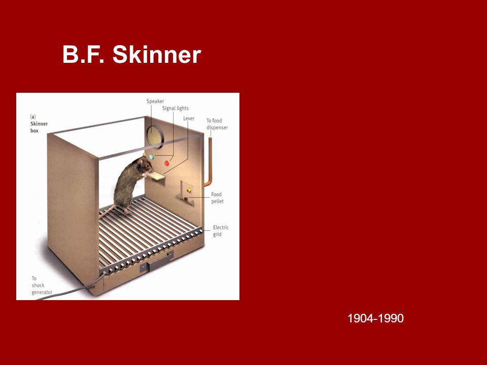 B.F. Skinner 1904-1990