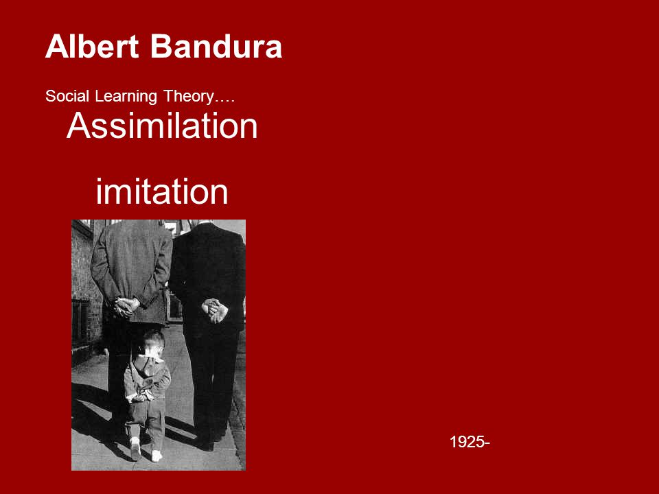 Albert Bandura Social Learning Theory…. Assimilation imitation 1925-
