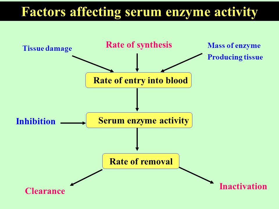 factors affecticg enzyme activity