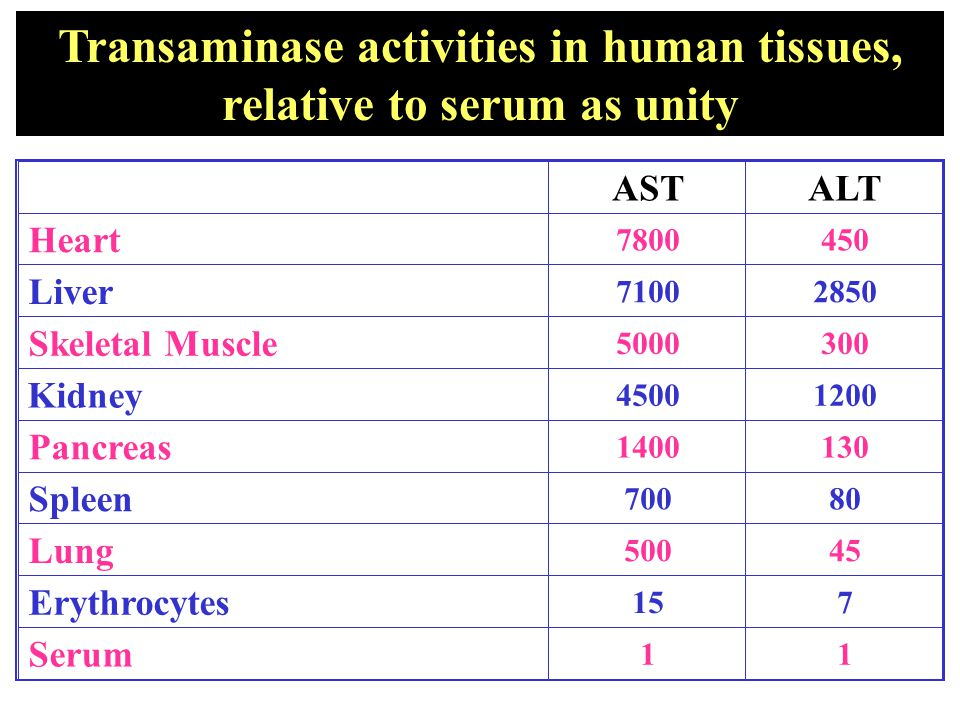 Transaminase activities in human tissues, relative to serum as unity