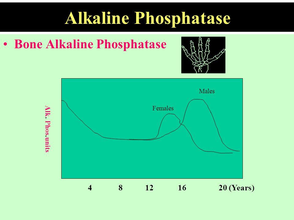 Alkaline Phosphatase Bone Alkaline Phosphatase 4 8 12 16 20 (Years)