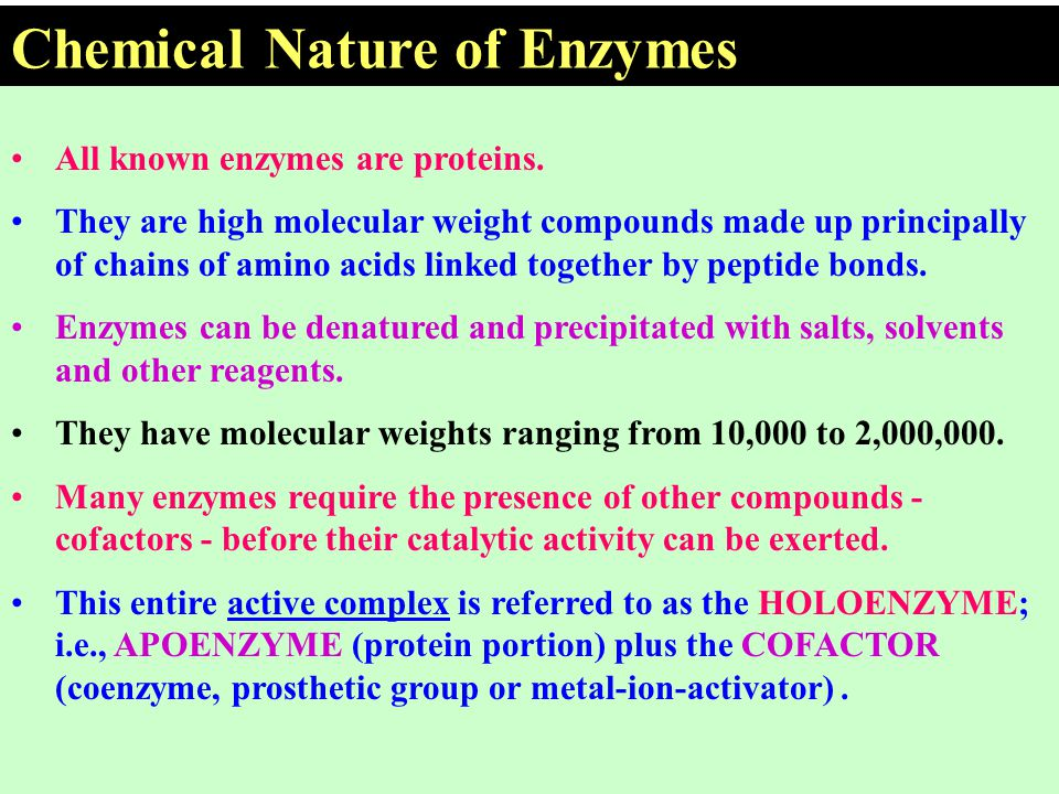 Chemical Nature of Enzymes