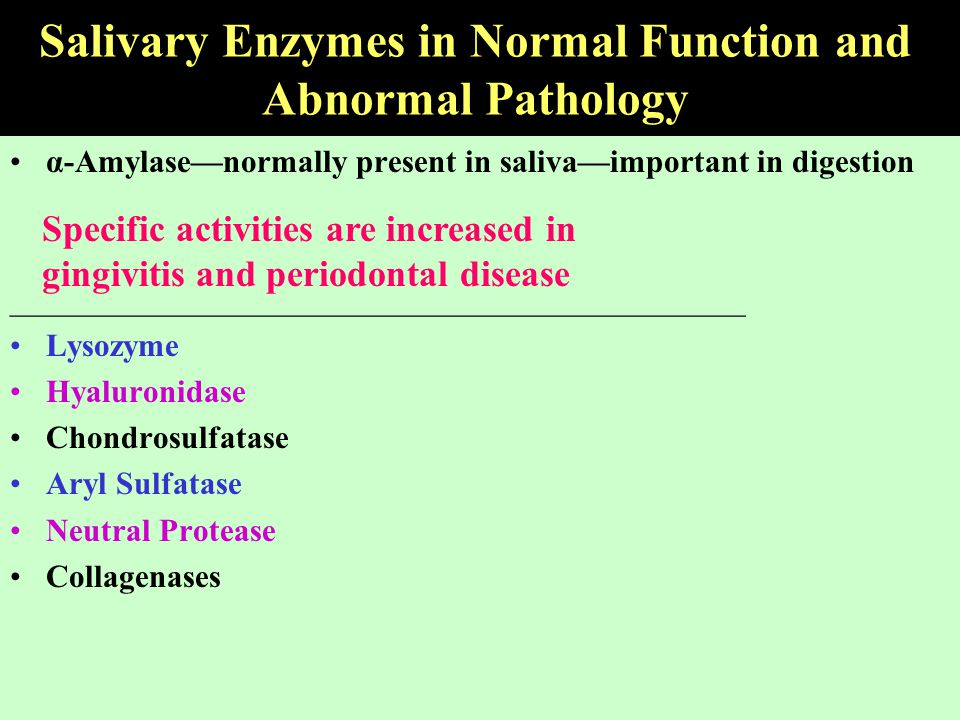 Salivary Enzymes in Normal Function and Abnormal Pathology