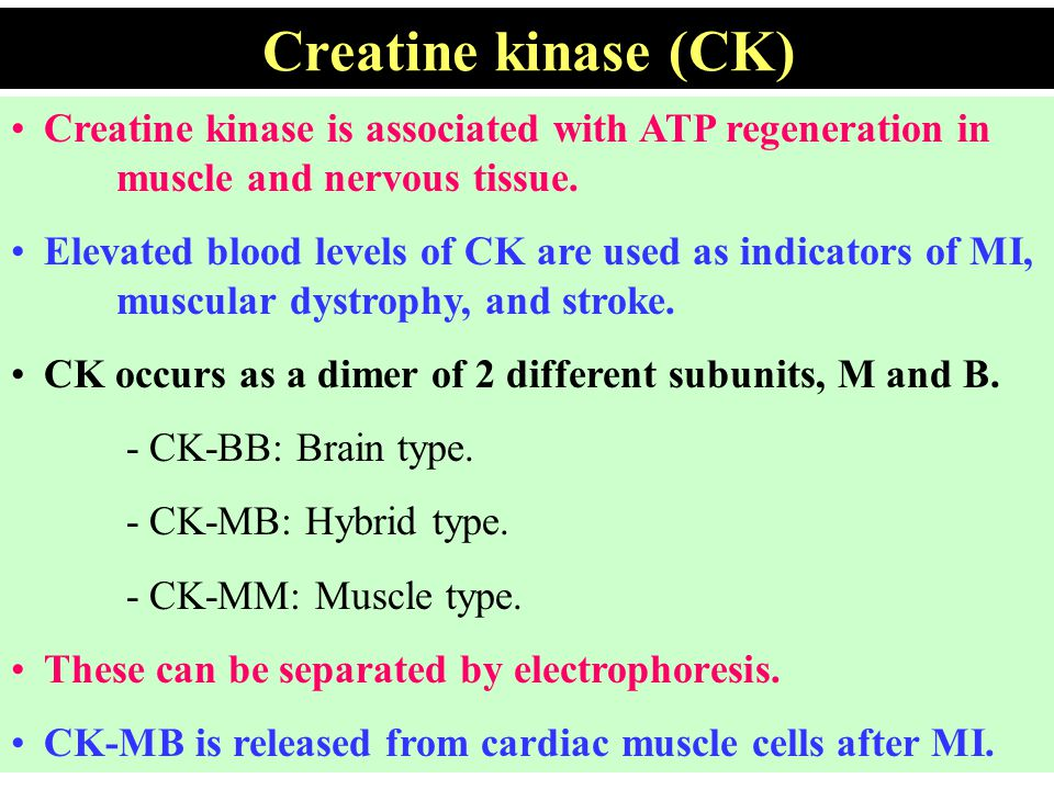 Creatine kinase (CK) Creatine kinase is associated with ATP regeneration in muscle and nervous tissue.