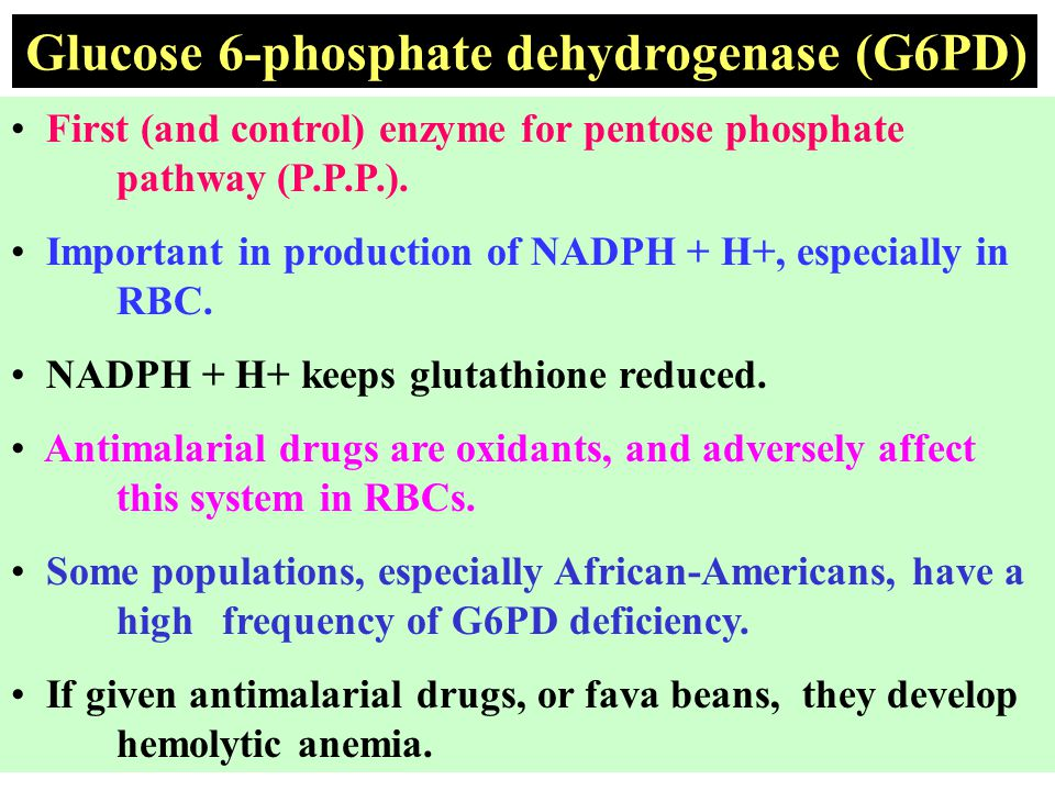 Glucose 6-phosphate dehydrogenase (G6PD)