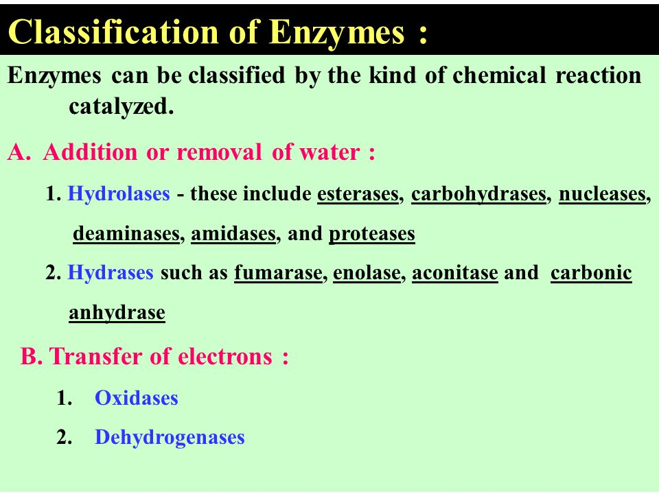 Classification of Enzymes :