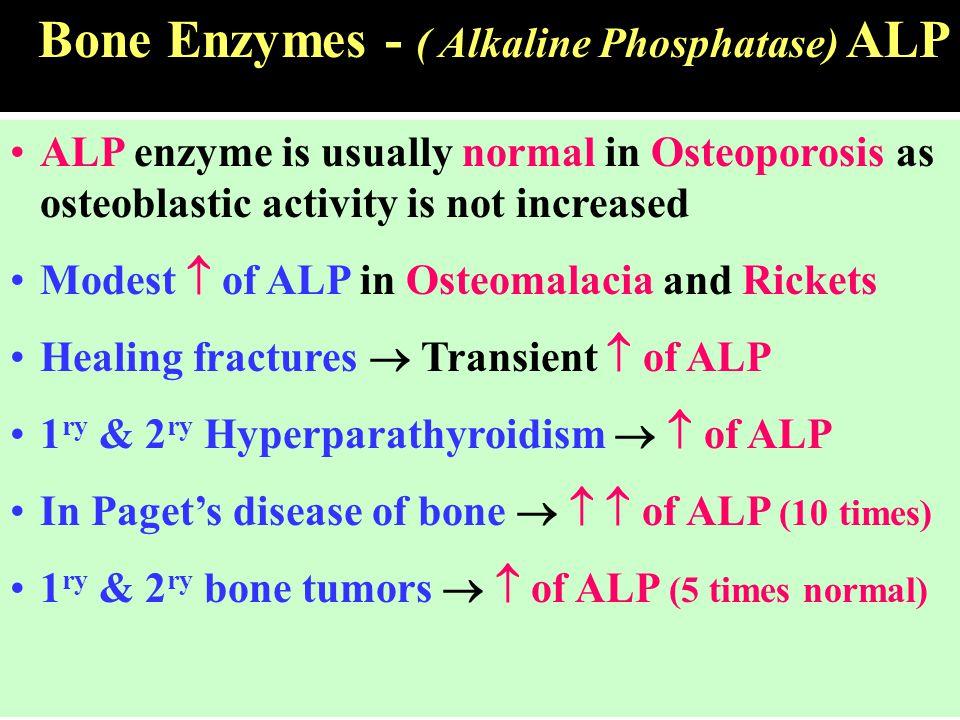 Bone Enzymes - ( Alkaline Phosphatase) ALP