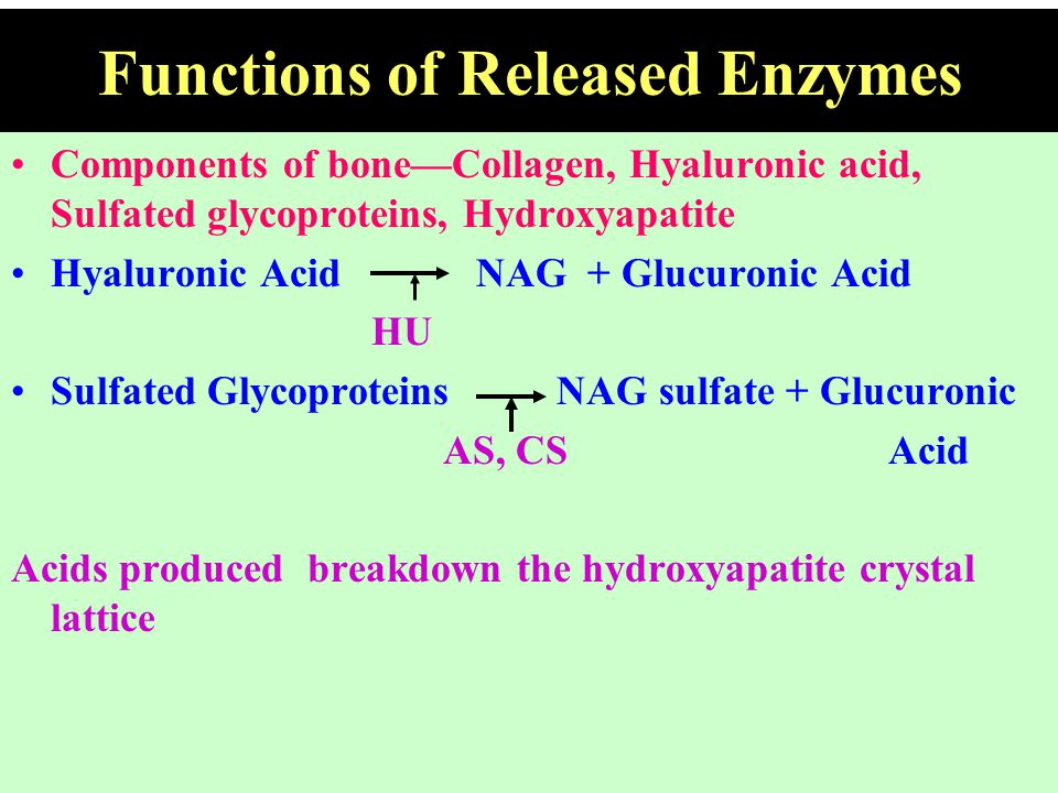Functions of Released Enzymes