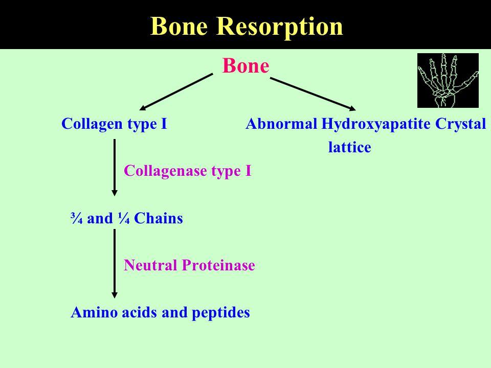 Bone Resorption Bone Collagen type I Abnormal Hydroxyapatite Crystal