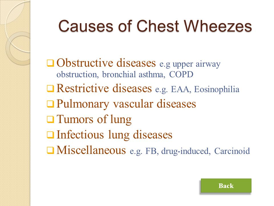 Causes of Chest Wheezes