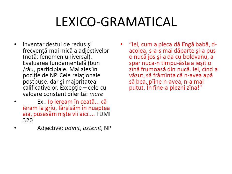 LEXICO-GRAMATICAL
