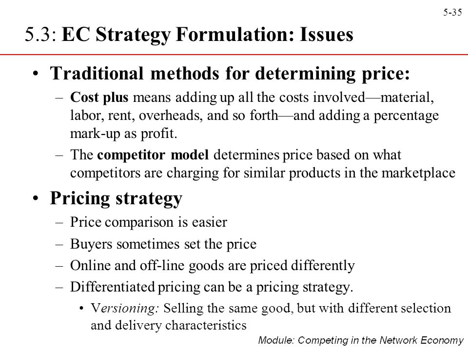 5.3: EC Strategy Formulation: Issues
