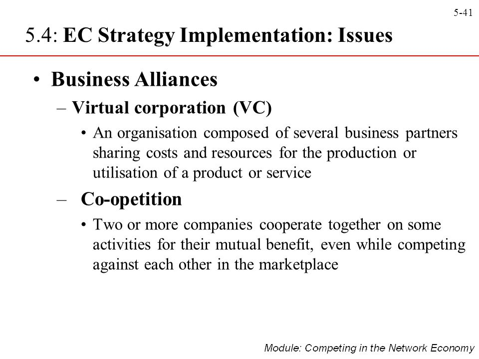 5.4: EC Strategy Implementation: Issues