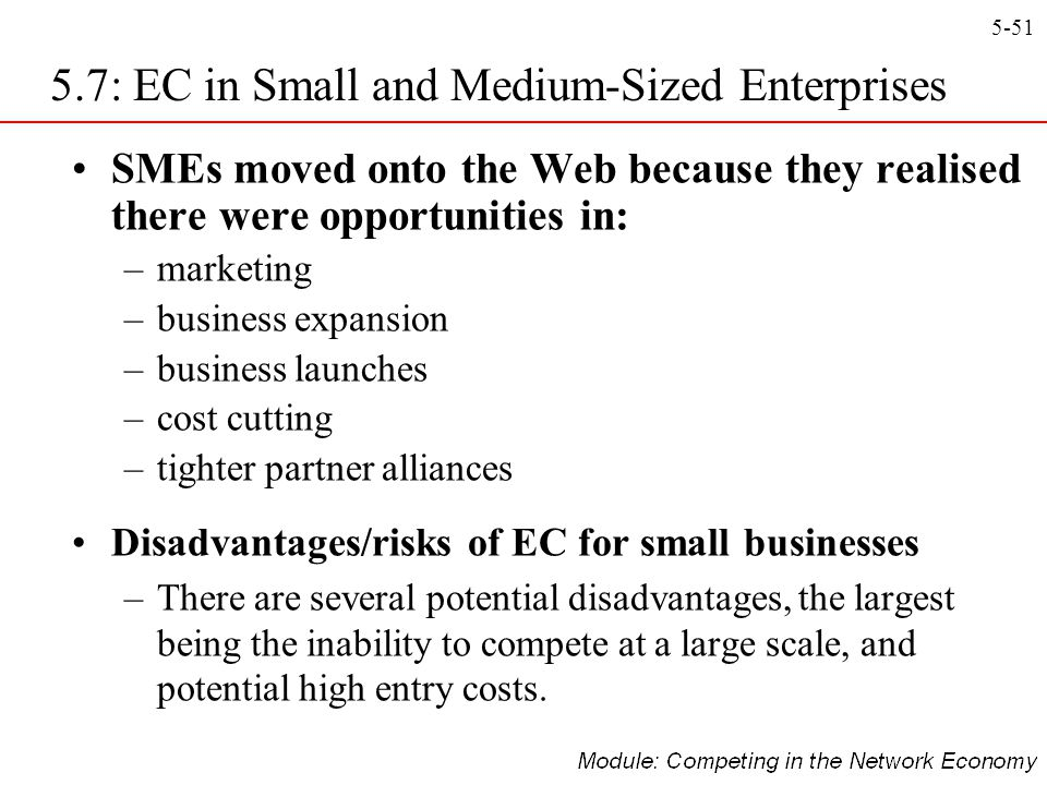 5.7: EC in Small and Medium-Sized Enterprises