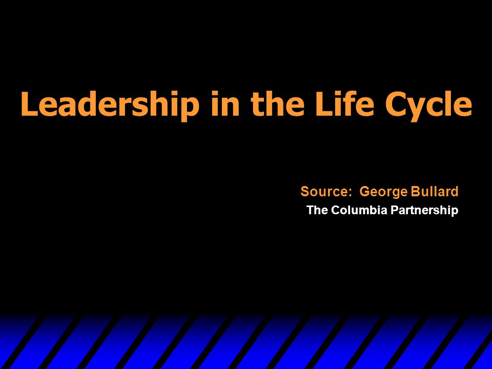Leadership in the Life Cycle