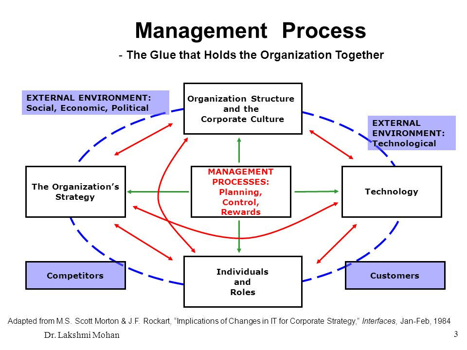 Management Process - The Glue that Holds the Organization Together